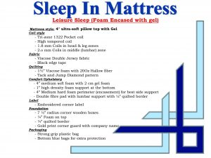 Sleep-In Leisure Sleep Queen Mattress